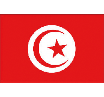 Adria Bandiere-PCG_FN5252407-BANDIERA TUNISIA-20